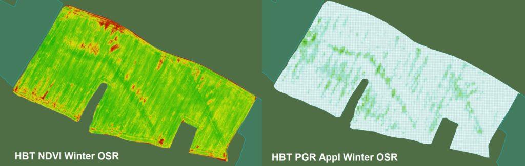 Карта поля озимого ріпаку з розрахованим індексом вегетації (зліва) та картограма на диференційне внесення регуляторів росту (праворуч)