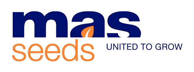 MAS Seeds Ukraine